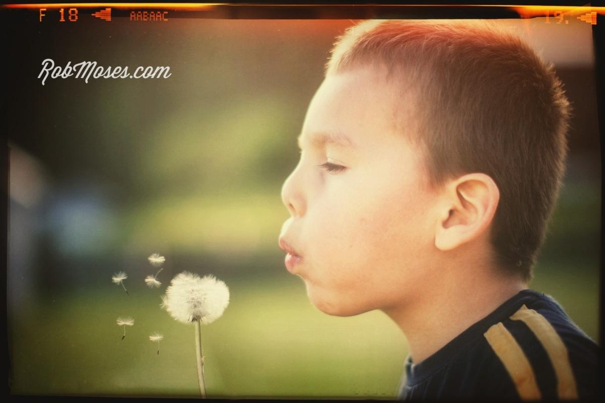 Child dandelion - Rob Moses photography - famous photo kids