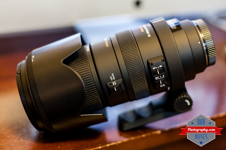 Sigma Bigma 50-50mm zoom lens bokeh - Rob Moses Photography 2