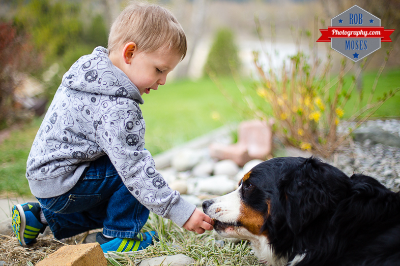 Child boy kid feed pet dog bokeh cute famous BC animal domestic - Rob Moses Photography - Vancouver Seattle Photography Photographers-1
