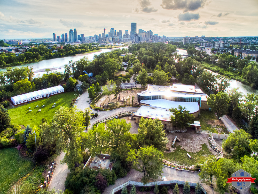 Calgary Zoo DJI Phantom 3 Professional drone yyc skyline sky Rob Moses Photography Calgary Photographer Photographers Native American Famous un celebrity Tlingit Ojibawa Top Popular Best Good Canadian Bow River