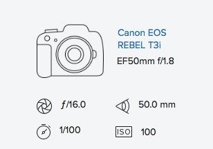 Canon EOS Rebel T3i & EF 50mm f:1.8 mark i 1 original exif data