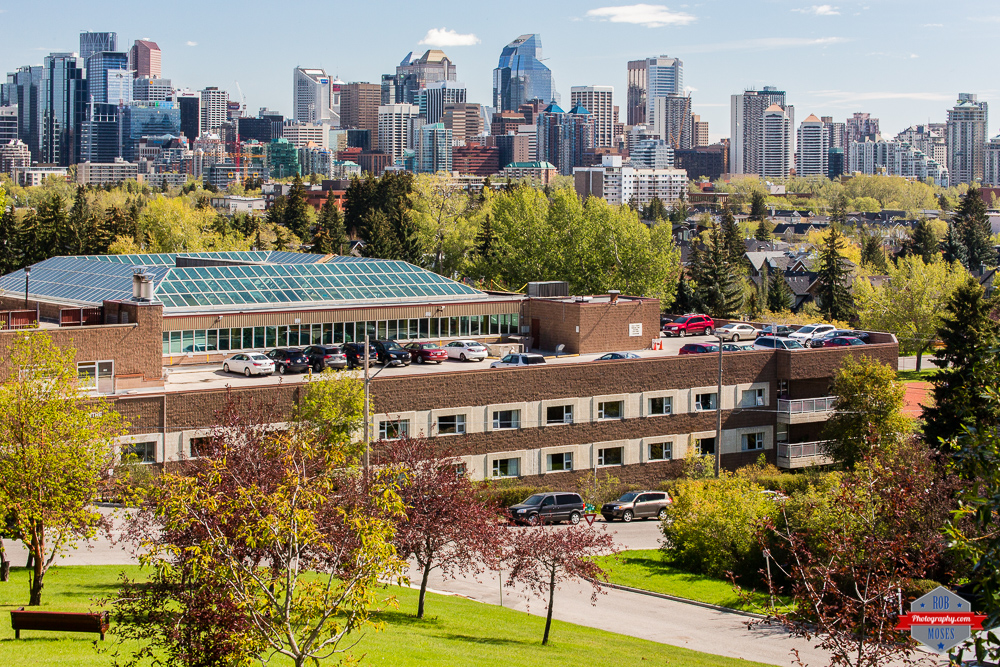 YYC Skyline city urban sky buildings Rob Moses Photography Calgary Photographer Photographers Native American Famous un celebrity Tlingit Ojibawa Top Popular Best Good Canadian modern