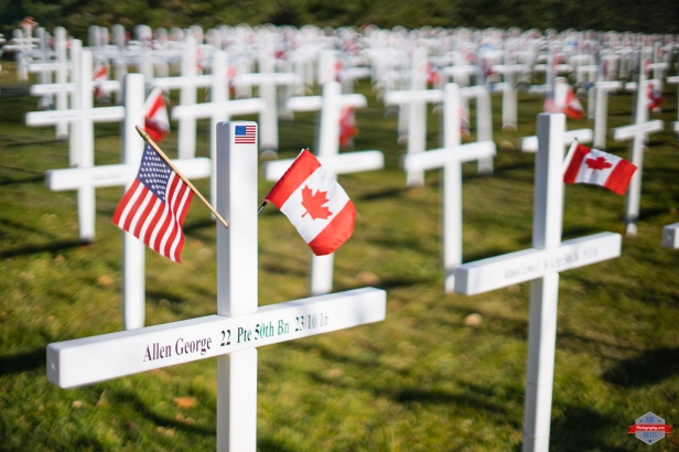 Image result for remembrance day usa