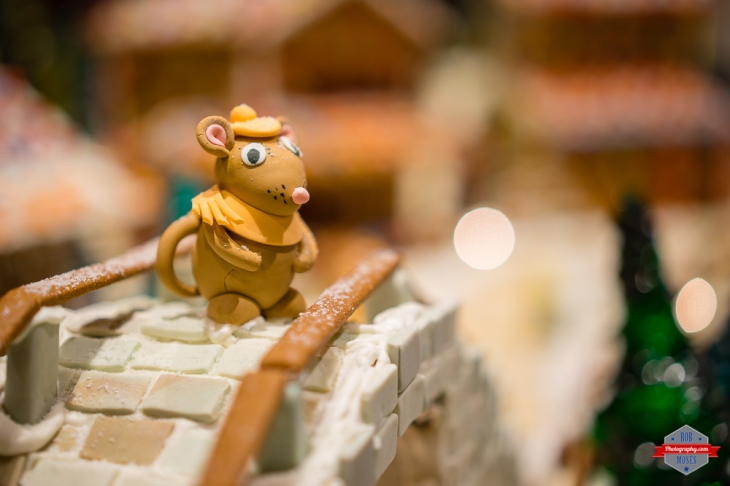 Mouse gingerbread house bridge town tasty awesome portland Rob Moses Photography Calgary Vancouver Seattle Spokane Photographer WA BC Native American Tlingit Ojibaway famous un celebrity Canadian best amazing bokeh portrait