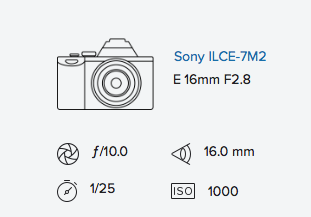 Sony a7ii with Sony Fisheye Converter