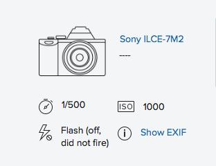 Sony a7ii & Canon FD 50mm f/1.2 @ 1.2