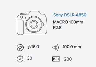 exif-data-rob-moses-sony-a850-minolta-100mm-f2-8-macro